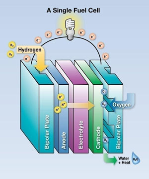 Photo: Fuel Cell Diagram